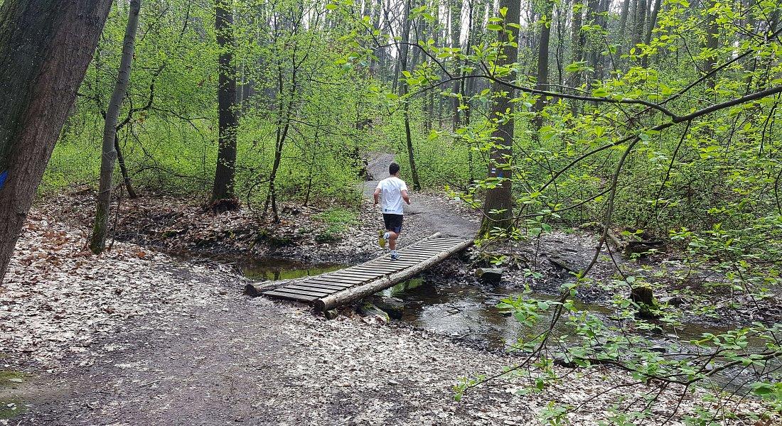 Trail Modřanskou roklí - 5