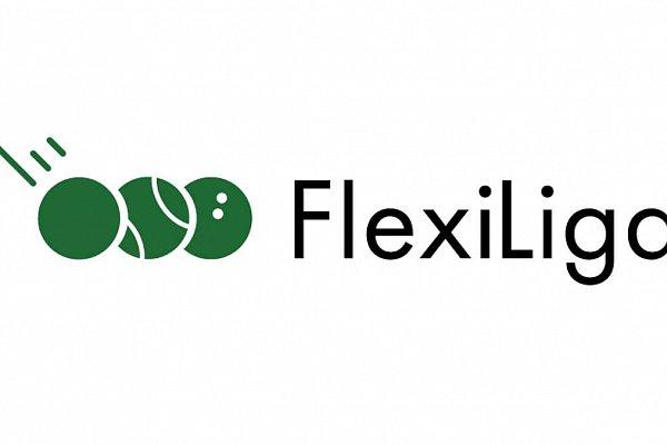 FlexiLiga rusza w lutym 2019