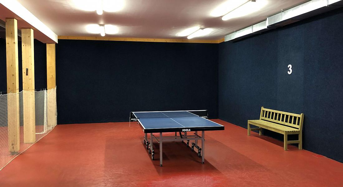 Turnaj mistrů ping-pongu
