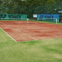 Tenis Xaverov