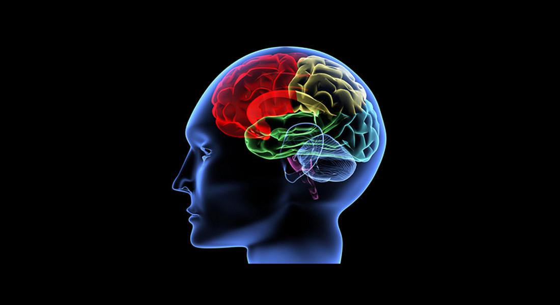Webinář VL: Jindra Bachmanová - vylaď svůj mozek na plný výkon